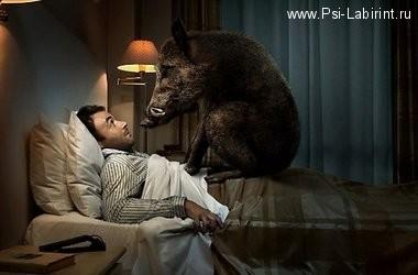 Кошмарные сны и сновидения и психотерапия по скайпу.